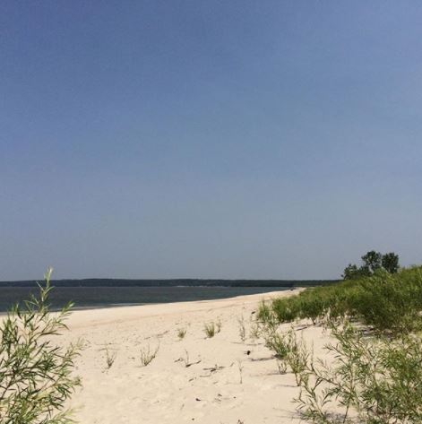 Best picnic spots in every Canadian province. Grand Beach Provincial Park, Manitoba